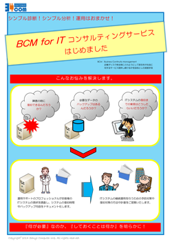 BCM for IT コンサルティングサービス P1